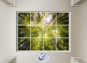عکس آسمان مجازی طرح درختان