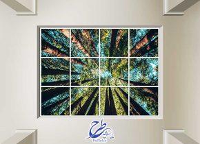 تصویر آسمان مجازی طرح درختان جنگل